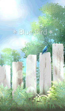 Happy Blue Bird 画像(1)