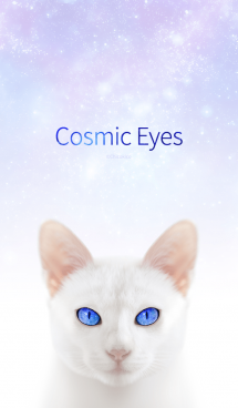 Cosmic Eyes -Cats- 画像(1)