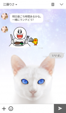 Cosmic Eyes -Cats- 画像(3)