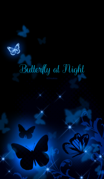 Butterfly at Night 画像(1)