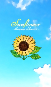 Sunflower -Language of flowers-